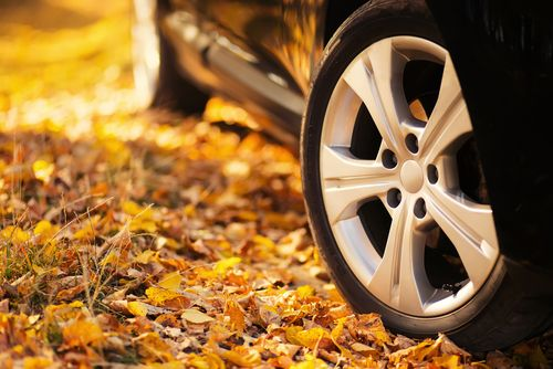 Safe Driving Tips in Autum Months